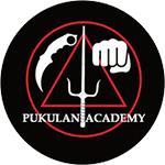 Pukulan-Academy